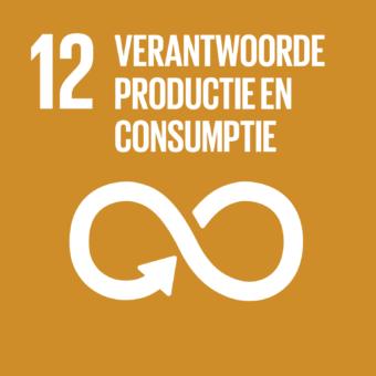 Duurzame consumptie- & productiepatronen