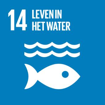 Duurzaam gebruik van oceanen & zeeën
