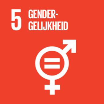 Bereik gendergelijkheid en empowerment voor alle vrouwen en meisjes