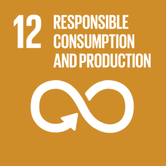 Sustainable consumption & production patterns