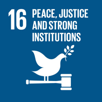 Promote just, peaceful & inclusive societies